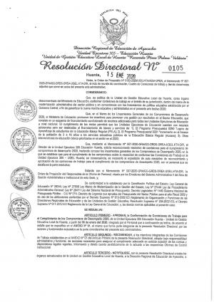 RESOLUCIÓN DIRECTORAL Nº 0105