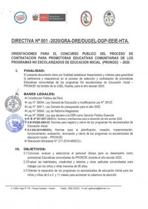 DIRECTIVA Nº 001-2020/GRA-DRE/DUGEL-DGP-EEIE-HTA