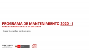 NORMA TECNICA ESPECÍFICA: RM NN°259 2020 MINEDU